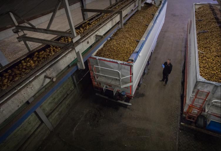 Sector Smart Farming2
